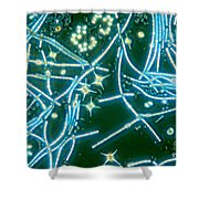 Phytoplankton Shower Curtain by M. I. Walker