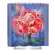 Pink Ginger Shower Curtain