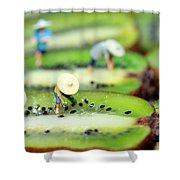 Planting Rice On Kiwifruit Shower Curtain
