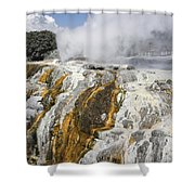 Pohutu And Prince Of Wales Feathers Shower Curtain
