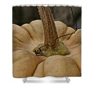 Pumpkin Top Shower Curtain