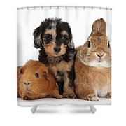 Pup, Guinea Pig And Rabbit Shower Curtain