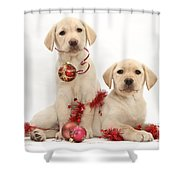 Puppies At Christmas Shower Curtain