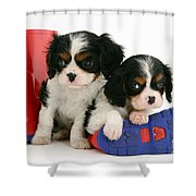 Puppies With Rain Boots Shower Curtain
