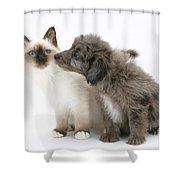 Puppy And Kitten Shower Curtain