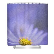 Purple Aster Shower Curtain