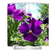 Purple Delight Shower Curtain