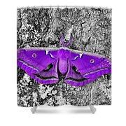 Purple Polyphemus Shower Curtain