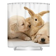 Rabbit And Puppies Shower Curtain