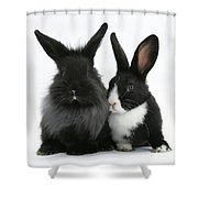 Rabbits Shower Curtain