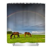 Rainbow Horses Shower Curtain by Evgeni Dinev