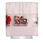 Raspberries Growing Mold Shower Curtain