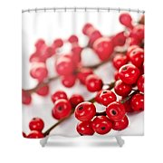 Red Christmas Berries Shower Curtain