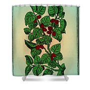 Red Mulberry Shower Curtain