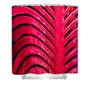 Red Ribs Shower Curtain