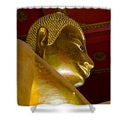 Red Roofed Hall With Ornaments And A Tall Golden Buddha Statue Shower Curtain