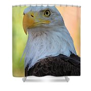 Regal Eagle Shower Curtain