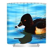 Ringbill Duck Shower Curtain