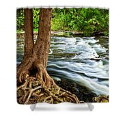 River Through Woods Shower Curtain