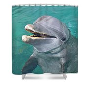 Roatan, Bay Islands, Honduras A Shower Curtain