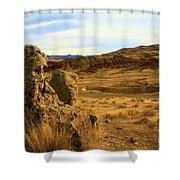 Rocky Painted Hills Shower Curtain