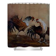 Rooster Fight Shower Curtain