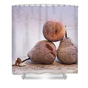Rotten Pears And Apple. Shower Curtain