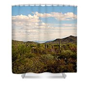 Saguaro National Park Az Shower Curtain