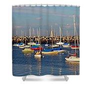 Sail Siesta Shower Curtain by Joann Vitali
