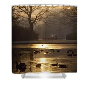 Saint Stephens Green, Dublin, Co Shower Curtain