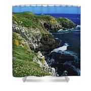 Saltee Islands, Co Wexford, Ireland Shower Curtain