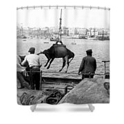 San Juan Harbor - Puerto Rico - C 1900 Shower Curtain
