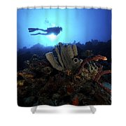 Scuba Diver Swims By Some Large Sponges Shower Curtain