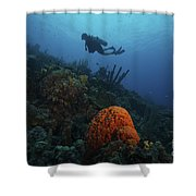 Scuba Diver Swims Underwater Amongst Shower Curtain