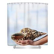Seashell In Hand Shower Curtain