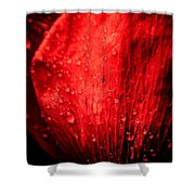 Seeing Red Shower Curtain