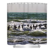 Single File Shower Curtain