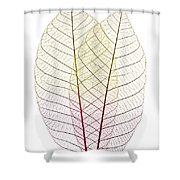 Skeleton Leaves Shower Curtain