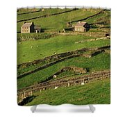 Slea Head, Dingle Peninsula, County Shower Curtain