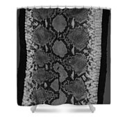 Snake Skin In Black And White Shower Curtain