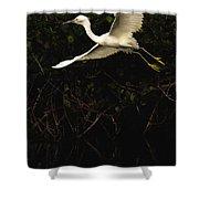 Snowy Egret, Florida Shower Curtain