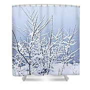 Snowy Trees Shower Curtain