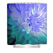 Soft Susy  Shower Curtain