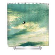 Solo Flight Shower Curtain