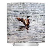 Spreading My Wings Shower Curtain