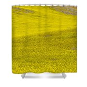 Spring In Spain Shower Curtain