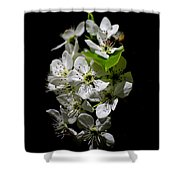 Spring Silhouette Shower Curtain