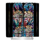 Stained Glass Pc 05 Shower Curtain
