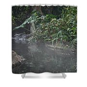 Steamy Shower Curtain