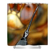 Stinger Of The Cicada Killer Wasp Shower Curtain
